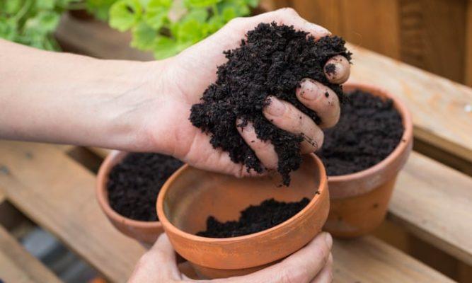 sử dụng phân ủ hữu cơ